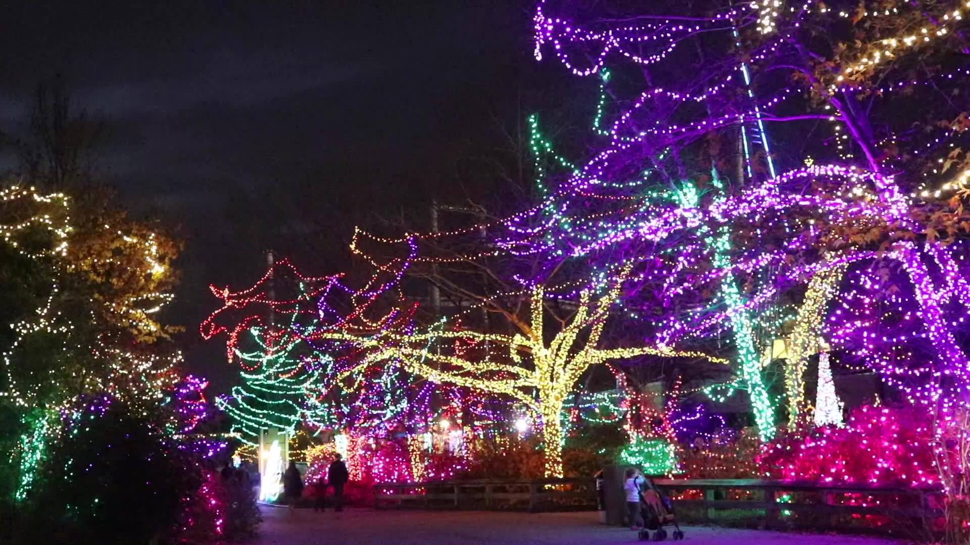 Kokomo Indiana Christmas Lights 2021 Guide To More Than A Dozen Local Light Displays To Brighten Your Holiday Season Wttv Cbs4indy