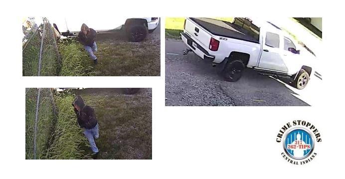 Whiteland robbery suspect